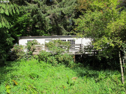 Photo of 90425 HWY 101, Florence, OR 97439 (MLS # 19139455)