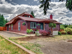 Photo of 39017 NW GOOSE HILL AVE, Woodland, WA 98674 (MLS # 19208072)
