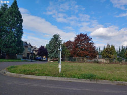 Photo of 218 NW 23RD ST, Battle Ground, WA 98604 (MLS # 19217302)