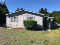 Photo of 87527 RHODOWOOD DR, Florence, OR 97439 (MLS # 19234369)