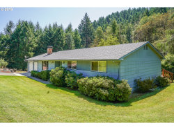 Photo of 451 WOODRUFF MOUNTAIN RD, Roseburg, OR 97471 (MLS # 19322792)