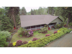 Photo of 324 WILDFLOWER LN, Oakland, OR 97462 (MLS # 19334234)