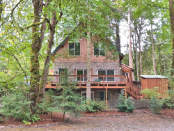 Photo of 39207 NE JENNY CREEK RD, Woodland, WA 98674 (MLS # 19340095)
