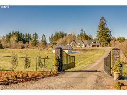 Photo of 9016 NE 244TH ST, Battle Ground, WA 98604 (MLS # 19382028)