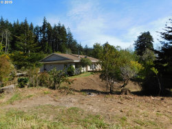 Photo of 92858 BLACKBERRY LN, Port Orford, OR 97465 (MLS # 19443428)
