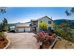 Photo of 117 PARADISE POINT LN, Roseburg, OR 97471 (MLS # 19516399)