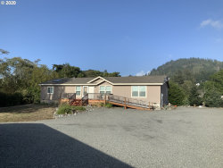 Photo of 94235 SIXTH ST, Gold Beach, OR 97444 (MLS # 20059896)