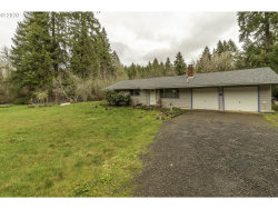 Photo of 24783 LAWRENCE RD, Junction City, OR 97448 (MLS # 20067280)