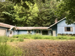 Photo of 4810 STATE HIGHWAY 138, Oakland, OR 97462 (MLS # 20109650)