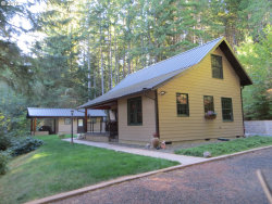Photo of 12545 UPPER SMITH RIVER RD, Drain, OR 97435 (MLS # 20148147)