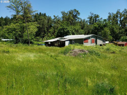 Photo of 2682 SCOTTS VALLEY RD, Yoncalla, OR 97499 (MLS # 20149258)