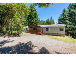 Photo of 41998 HUMBUG WAY, Port Orford, OR 97465 (MLS # 20223060)