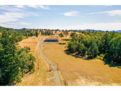 Photo of 3285 STATE HIGHWAY 138, Oakland, OR 97462 (MLS # 20266593)