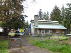 Photo of 20062 S YOUNG RD, Molalla, OR 97038 (MLS # 20382183)