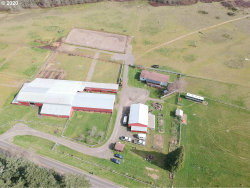 Photo of 26250 HIGH PASS RD, Junction City, OR 97448 (MLS # 20397316)