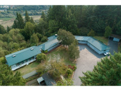 Photo of 16980 COHO DR, Brookings, OR 97415 (MLS # 20400340)
