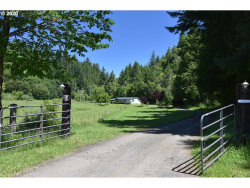 Photo of 7724 LOWER SMITH RIVER RD, Reedsport, OR 97467 (MLS # 20424429)