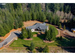 Photo of 23601 NE 210TH ST, Battle Ground, WA 98604 (MLS # 20661796)