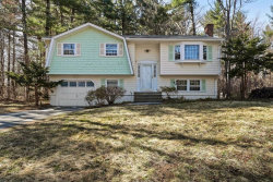Photo of 169 Concord Rd, Chelmsford, MA 01824 (MLS # 72640286)