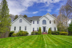 Photo of 24 Broken Tree Road, Medway, MA 02053 (MLS # 72655390)