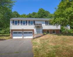 Photo of 621 Birnie Avenue, West Springfield, MA 01089 (MLS # 72678797)