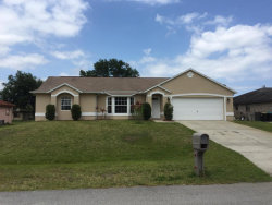 Photo of 601 Davidson Street, Palm Bay, FL 32909 (MLS # 752607)