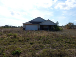 Photo of 3425 Benson Road, Mims, FL 32754 (MLS # 773505)