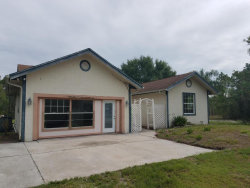 Photo of 12750 79th Street, Fellsmere, FL 32948 (MLS # 786073)
