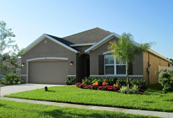Photo of 5567 Yearling Drive, Titusville, FL 32780 (MLS # 791893)