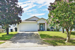 Photo of 3443 Yashica Court, Titusville, FL 32796 (MLS # 791976)