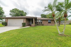 Photo of 670 Hyannie Street, Palm Bay, FL 32907 (MLS # 795132)