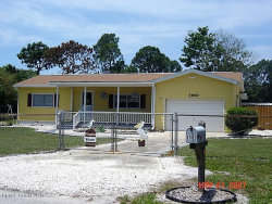 Photo of 3960 Cushman Drive, Mims, FL 32754 (MLS # 795268)