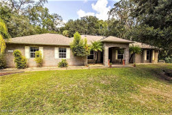 Photo of 4450 Windsor Court, Mims, FL 32754 (MLS # 803033)