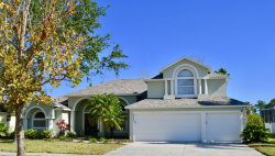 Photo of 3840 Savannahs Trl, Merritt Island, FL 32953 (MLS # 803851)
