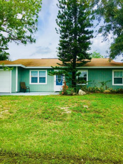 Photo of 116 Frederica Avenue, Palm Bay, FL 32907 (MLS # 808702)