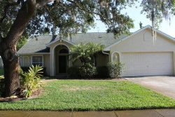 Photo of 3953 Tangle Drive, Titusville, FL 32796 (MLS # 811418)