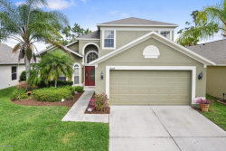 Photo of 18009 Saxony Lane, Orlando, FL 32820 (MLS # 816862)