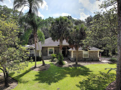 Photo of 12004 Gray Birch Circle, Orlando, FL 32832 (MLS # 823969)