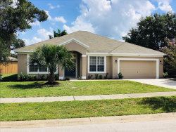 Photo of 1217 Meadow Lark Drive, Titusville, FL 32780 (MLS # 824810)