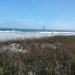 Photo of 3620 Ocean Beach Boulevard, Unit 36, Cocoa Beach, FL 32931 (MLS # 837162)