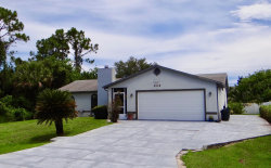 Photo of 1301 Buffing Circle, Palm Bay, FL 32909 (MLS # 848847)
