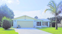 Photo of 3585 E Powder Horn Road, Titusville, FL 32796 (MLS # 853290)
