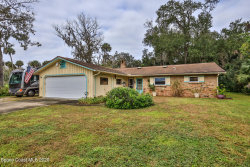 Photo of 155 N Cory Drive, Edgewater, FL 32141 (MLS # 891186)