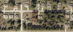 Photo of 488 SW Lafayette Street, Palm Bay, FL 32908 (MLS # 731334)