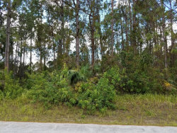 Photo of 1662 SW Gould Avenue, Palm Bay, FL 32908 (MLS # 793723)