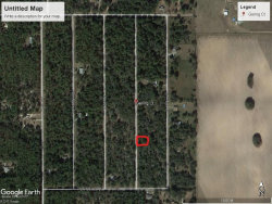 Photo of 0 Sw Gering Ct. Dunnellon, Fl, Oklawaha, FL 32179 (MLS # 799301)