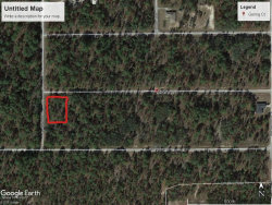 Photo of 0 NW Luna Ave. Dunnellon, Fl 34431, Oklawaha, FL 32179 (MLS # 799303)