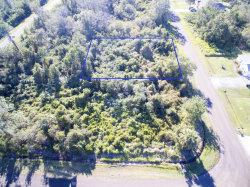 Photo of 1438 Wigmore Street, Palm Bay, FL 32909 (MLS # 800566)