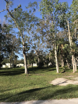 Photo of 2494 Rowland Court, Mims, FL 32754 (MLS # 801039)