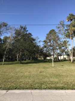 Photo of 2488 Rowland Court, Mims, FL 32754 (MLS # 801048)